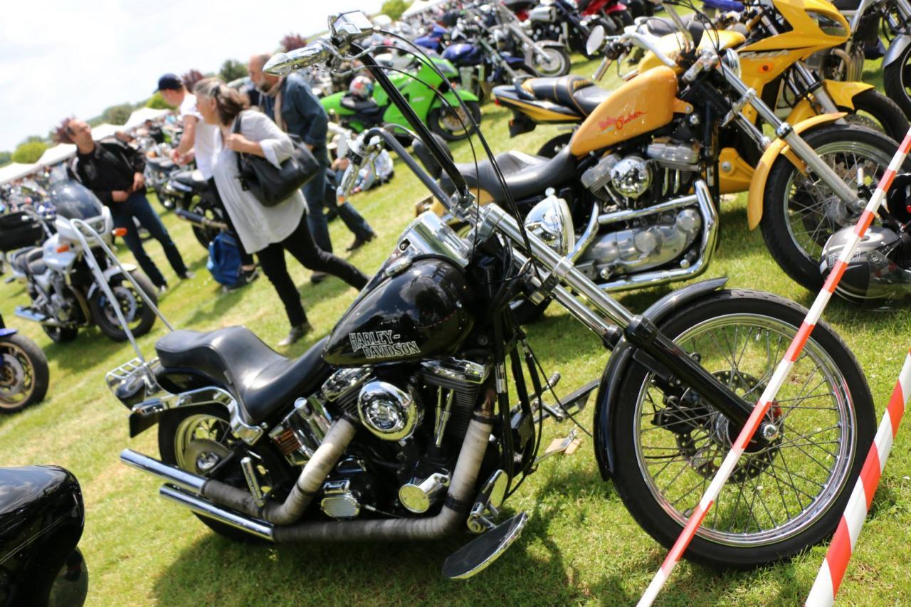 Motos (112)