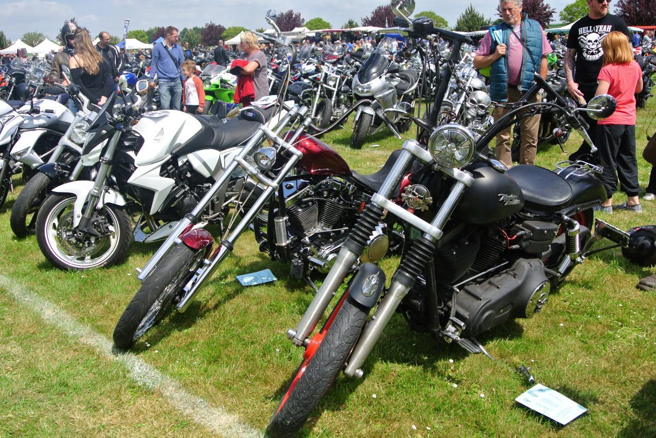Motos (159)