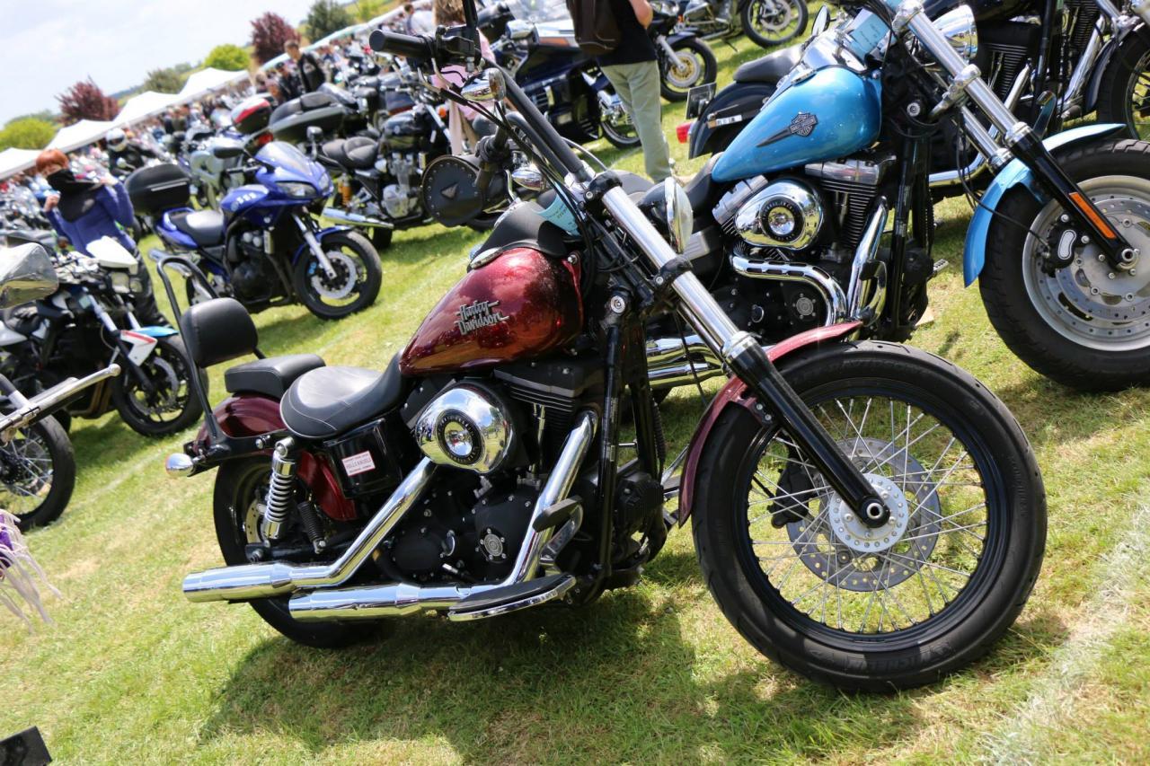 Motos (74)