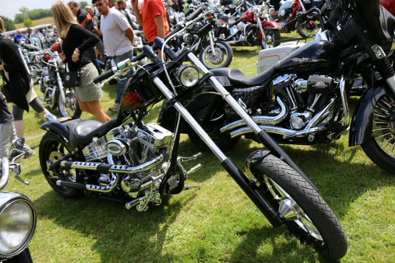 Motos (75)