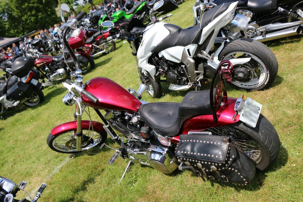 Motos (80)