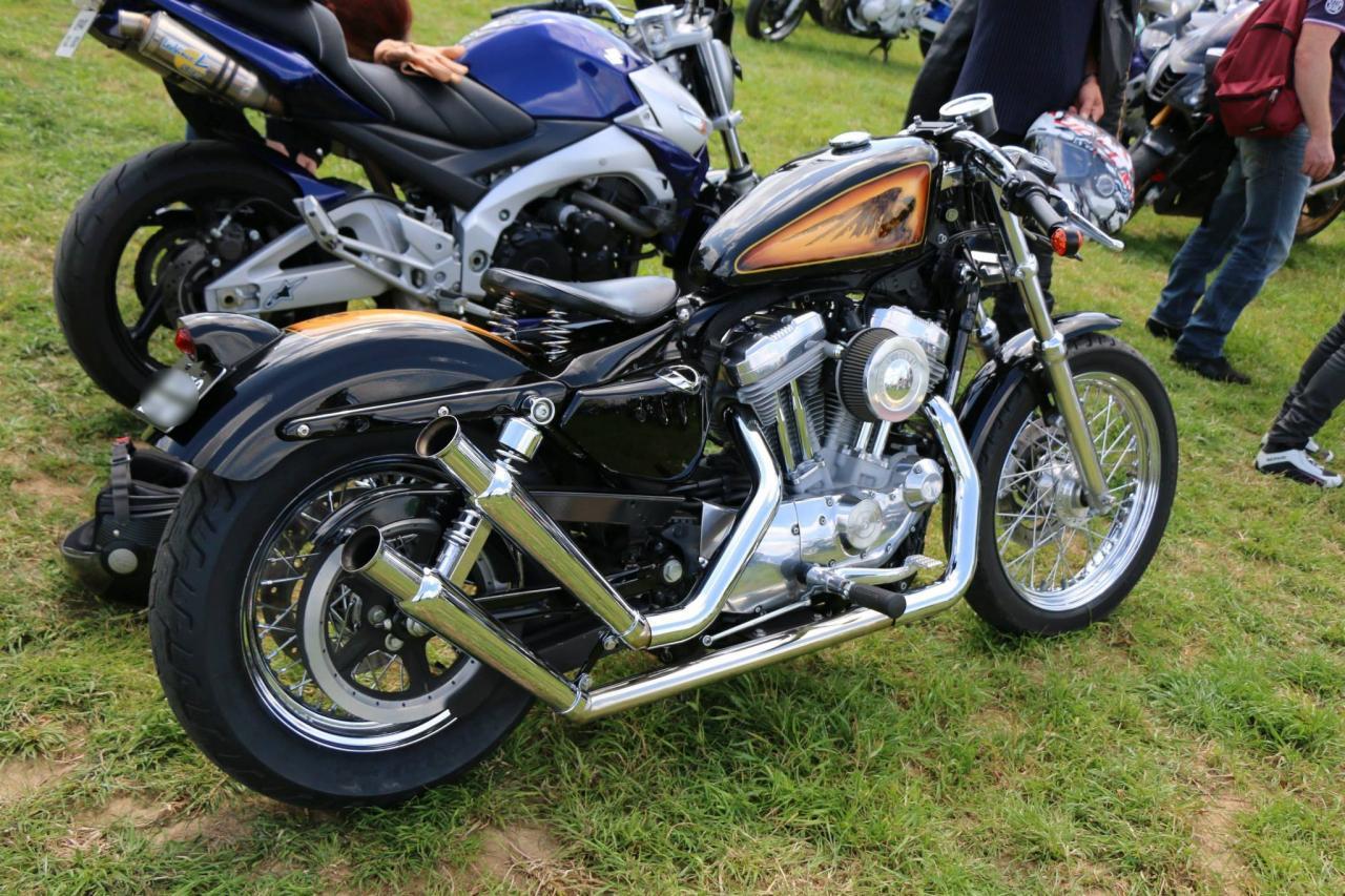 Motos (82)