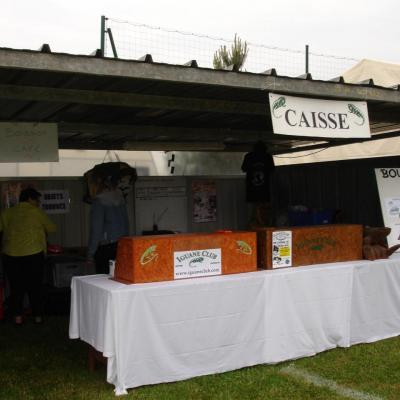 Stand (3)