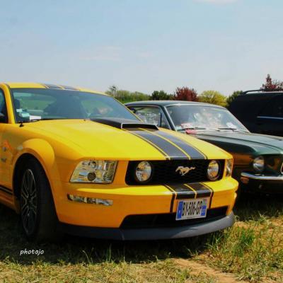 voitures (2)