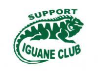 sticker iguane.jpg